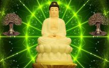 Đức Phật - Mùa Phật Đản