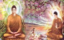 Khái niệm pháp (dharma) trong Phật giáo
