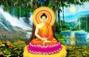Tấm Gương Hiếu Hạnh Của Đức Bổn Sư Thji1ch Ca Mâu Ni Phật