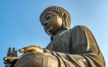 Bản năng và lý trí theo quan niệm Phật giáo